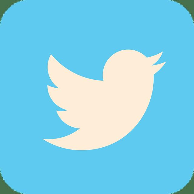 Twitter Nasıl Para Kazanıyor?