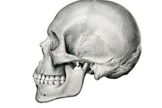 Kafatası Eğriliği Nedir